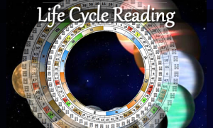 life-cycle-reading-human-design-shop-marian-mills