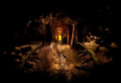 dreams-breadcrumb-trail-human-design-waiting-initiating-manifesting-projector-generator-marian-mills