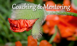 coaching-mentoring-human-design-liberation-marian-mills