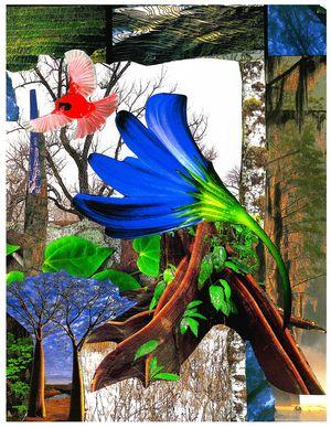 shelley klammer emotional healing expressive art inspirations