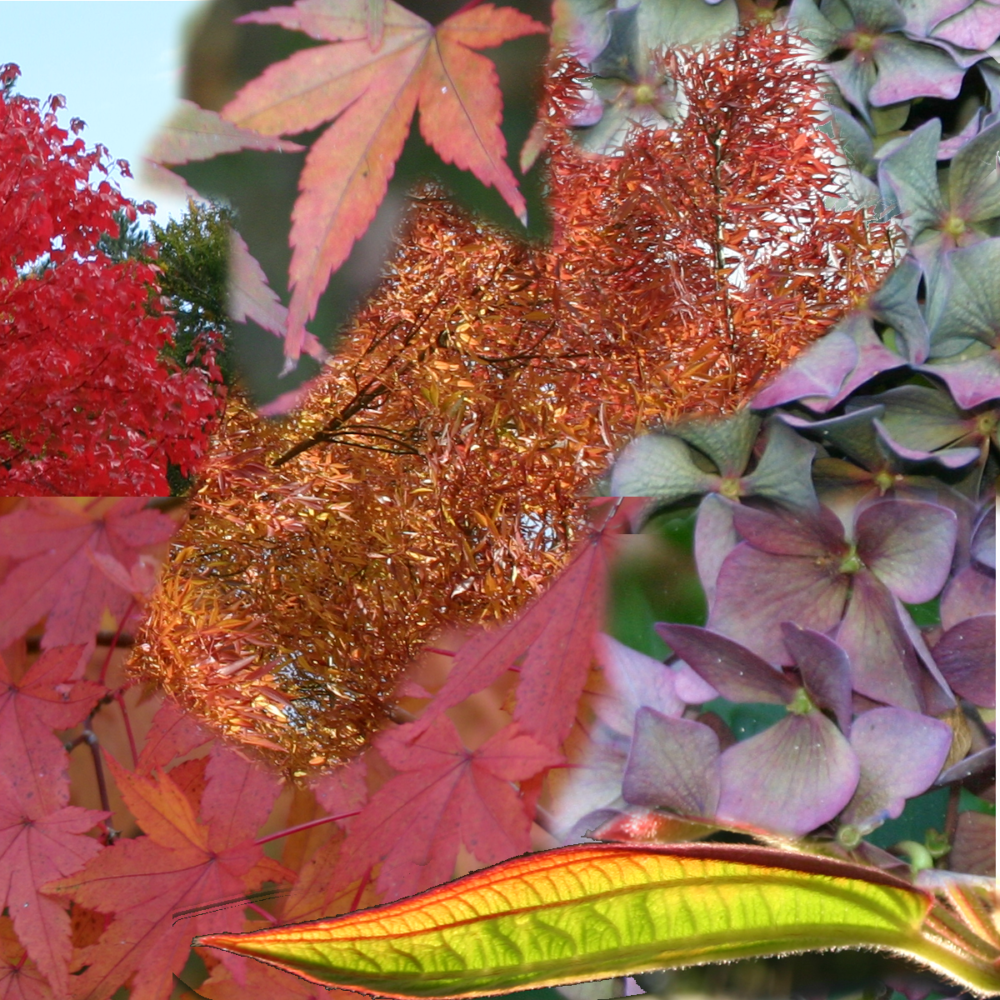 autumn-felt-ruffle-scarf-nature-leaves